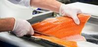 pakowacz ryb filetownie anglia
